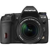 Olympus Corporation 262031