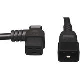 Tripp Lite P036-002-19LA Heavy Duty Power Cord | SDC-Photo