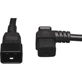 Tripp Lite P036-002-19RA Heavy Duty Power Cord | SDC-Photo