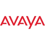"Avaya Standard Set of 19"" Rack Mount Brackets - Spare"