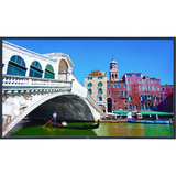 """NEC Display 42"""" High-Performance LED-Backlit Commercial-Grade Display w/ Integrated Speakers"""