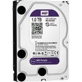 WD Purple 1TB SATA 6 Gb/s,  3.5-inch Surveillance Hard Drive