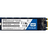WD Blue M.2 250GB Internal SSD Solid State Drive - SATA 6Gb/s - 540 MB/s Maximum Read Transfer Rate - 500 MB/s Maximu (WDS250G1B0B)