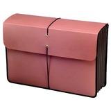 "Case-Guard File Envelopes - 5¼"" Expansion, 25/Carton"
