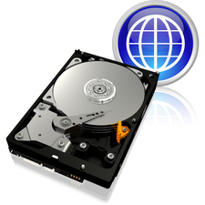 "WD Blue WD1600AAJB 160 GB 3.5"" Internal Hard Drive"
