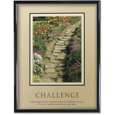 AVT 78032 Advantus Challenge Framed Motivational Print AVT78032