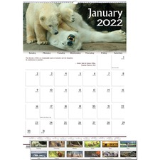 HOD 3732 Doolittle Earthscapes Wildlife Midsz Wall Calendar HOD3732