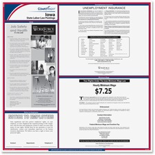 TFP E10IA TFP Data Sys. Iowa State Labor Law Poster TFPE10IA