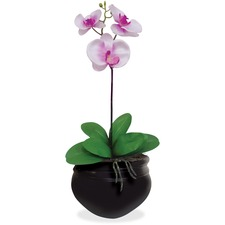 NUD T7980 NuDell Artificial Orchid Plant NUDT7980