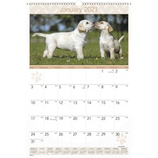 AAG DMW16728 At-A-Glance Puppies Monthly Wall Calendar AAGDMW16728