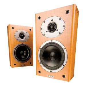 Acoustic Energy Aelite One Speaker