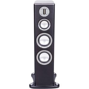Monitor Audio Platinum PL200 Speaker