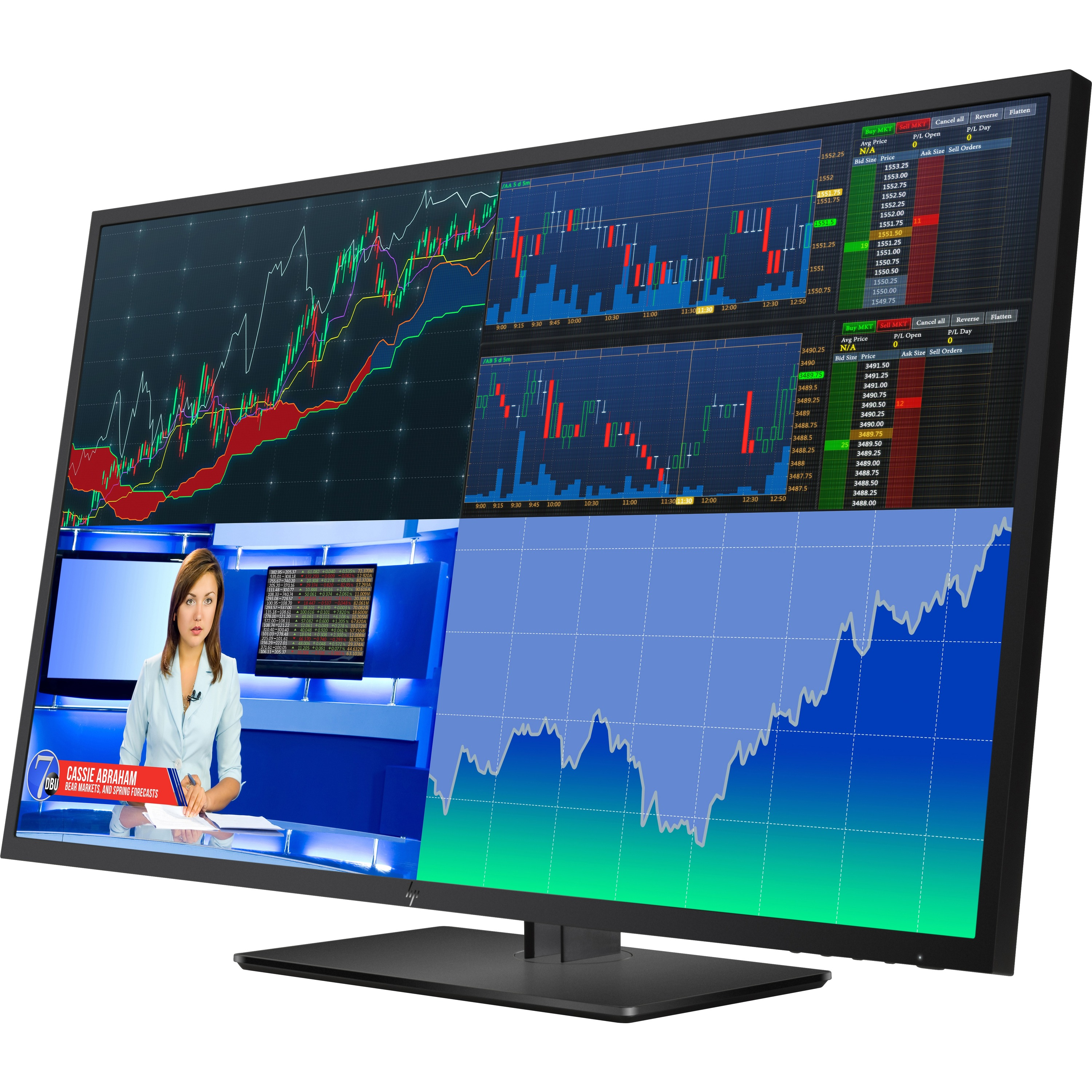 """HP Business Z43 42.5"""" 4K UHD LED LCD Monitor - 16:9 - Black Pearl_subImage_1"""
