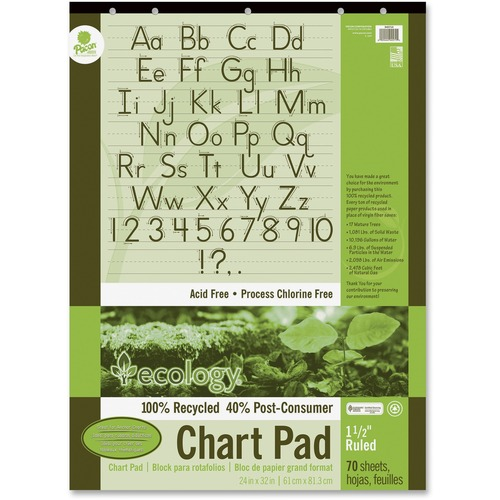 Pacon Ecololgy Unruled Recycled Chart Pad | by Plexsupply