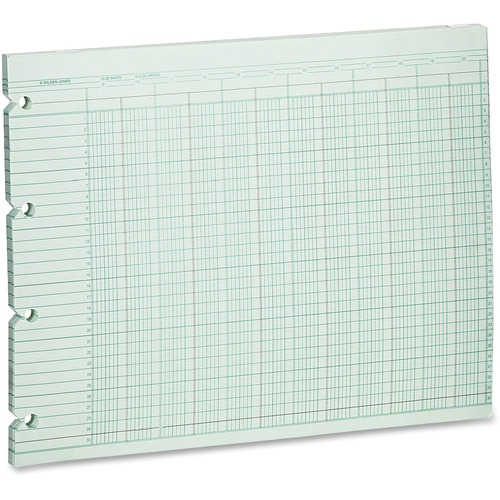 Wilson jones - accounting sheets, 20 columns, 11 x 14, 100 loose sheets/pack, green, sold as 1 pk