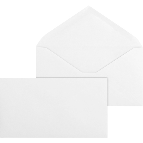 Bus. Source No. 6-3/4 V-Flap Business Envelopes | by Plexsupply