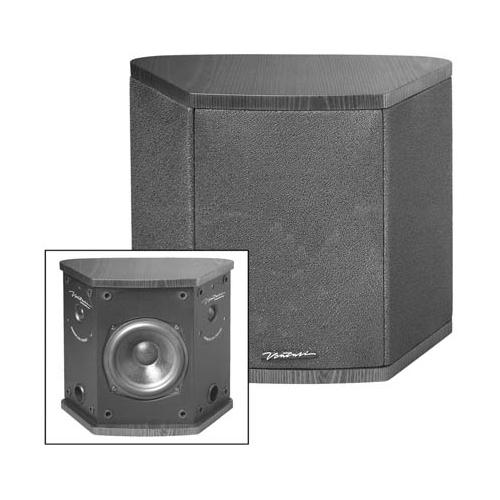 BIC America DV5 150 W Speaker