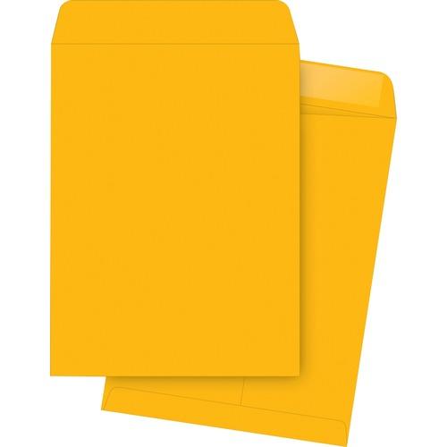 Bus. Source Kraft Gummed Catalog Envelopes   by Plexsupply