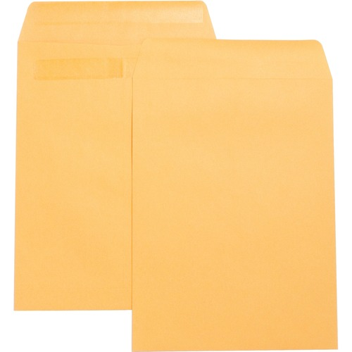 Bus. Source Press-To-Seal Catalog Envelopes    by Plexsupply