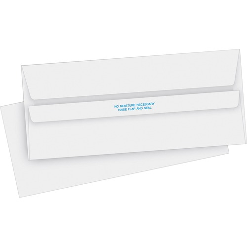 Bus. Source No. 10 Self-seal Invoice Envelopes | by Plexsupply