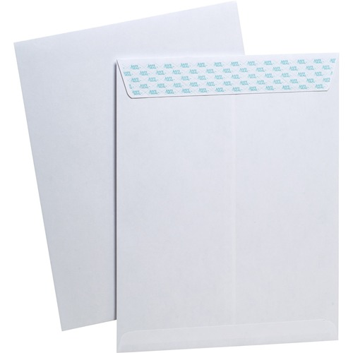 Ampad Security Envelopes w/ SafeSeal