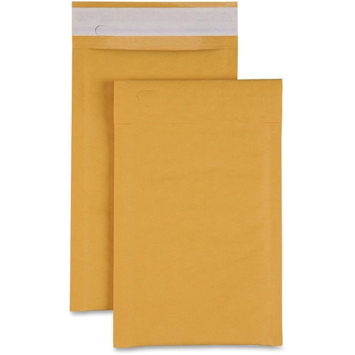 Sparco Size 0 Bubble Cushioned Mailers | by Plexsupply