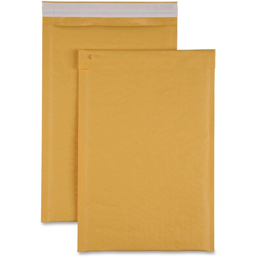 Sparco Size 3 Bubble Cushioned Mailers | by Plexsupply