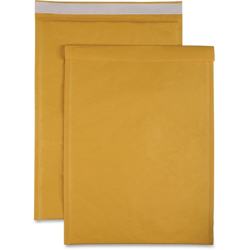 Sparco Size 6 Bubble Cushioned Mailers | by Plexsupply