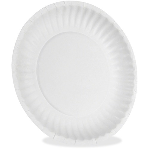Dixie Foods Uncoated Economical Paper Plates