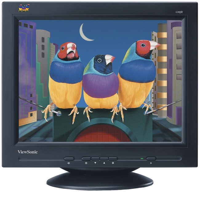 Viewsonic Corporation G90FB-2