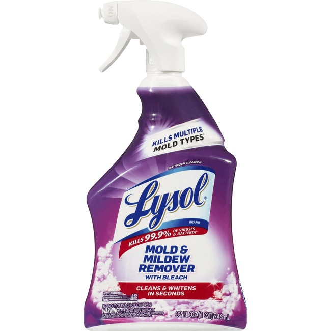 Lysol Mold and Mildew Remover with Bleach