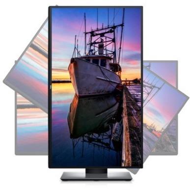 "Dell UltraSharp U2520D 25"" WQHD Edge WLED LCD Monitor - 16:9_subImage_16"