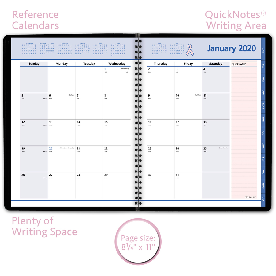 at a glance quicknotes special edition monthly planner