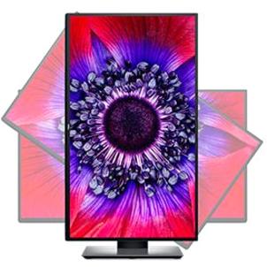 "Dell UltraSharp U2520D 25"" WQHD Edge WLED LCD Monitor - 16:9_subImage_8"