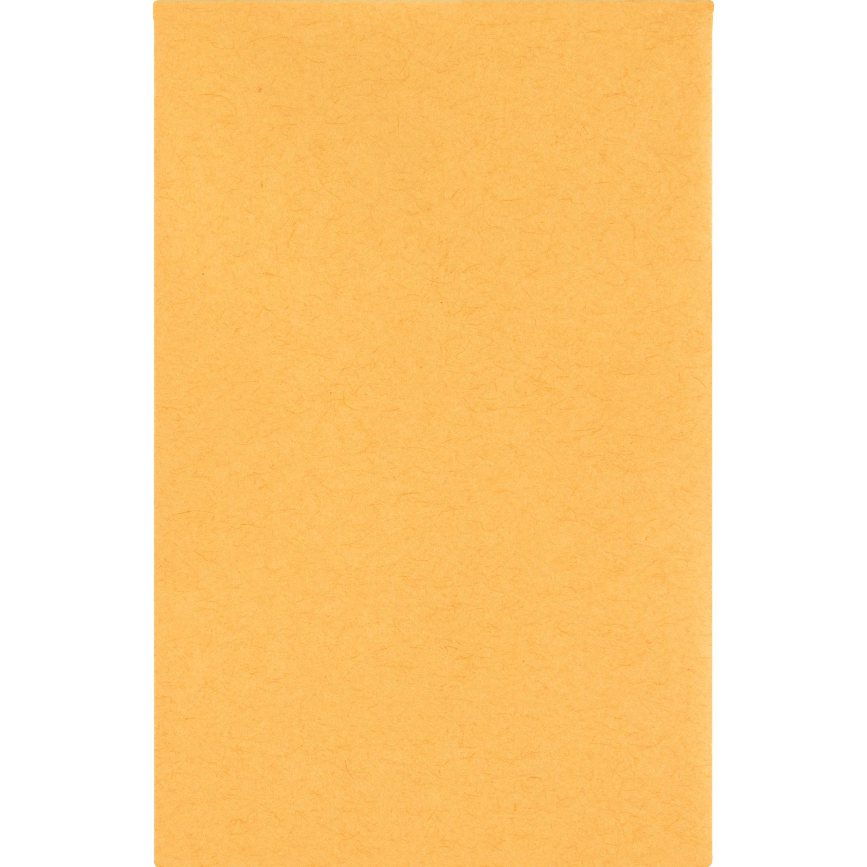 Business Source Little Coin Kraft Envelope