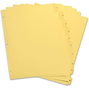 Clear Plastic Numbered Tab Indexes