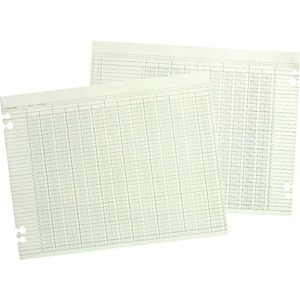 Wilson Jones Columnar Ruled Ledger Sheet WLJG5024