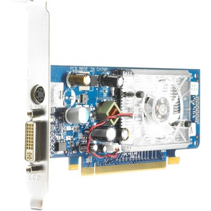 HP GeForce 8400GS 256MB DVI Low Profile PCI-E Video Card for HP Compaq Business Desktops