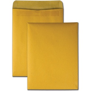 100/Pack Catalog Envelope