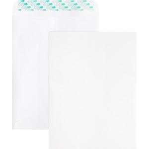 Removable Strip Catalog Envelopes