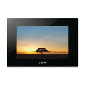 "Sony DPF-XR100 Digital Photo Frame - Photo Viewer, Audio Player, Video Player - 10.2"" LCD"
