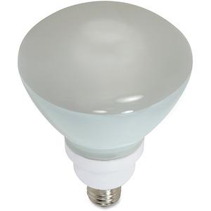 23-watt CFL R40 Compact Floodlight