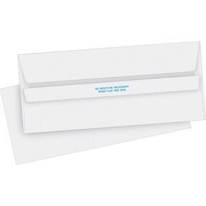 Business Source Invoice Envelope BSN04644