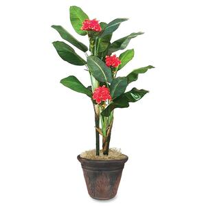 Glolite Nu-dell 7ft. Flowering Banana Tree NUDT7763