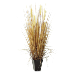 Contemporary Grass Display