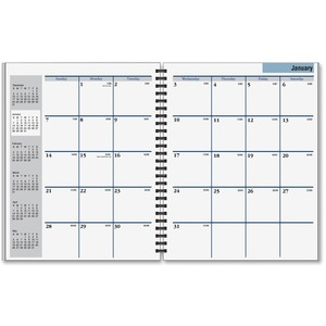 At-A-Glance DayMinder Appointment Book Refill AAGG54750