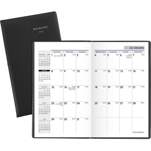 At-A-Glance Day Reminder Pocket Monthly Planner AAGSK5300