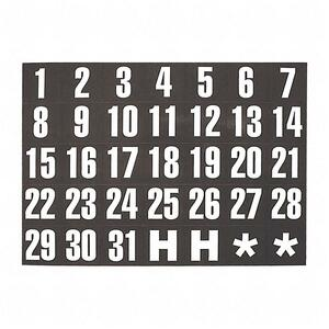 Magnetic Date Indicator