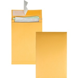 Kraft Expansion Envelope