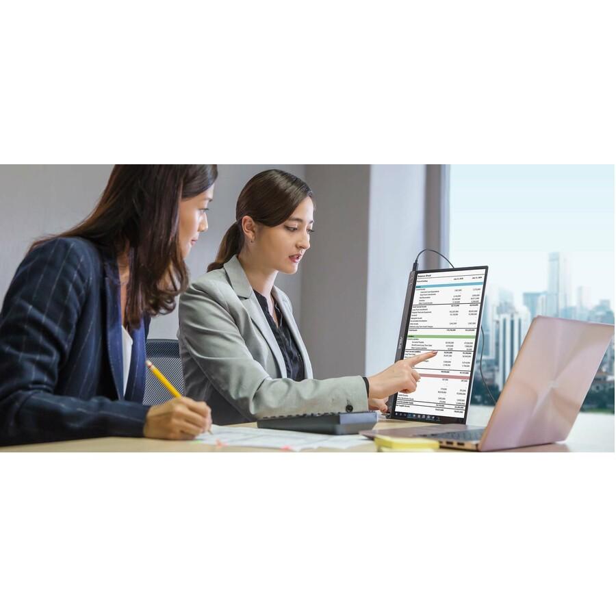 "Asus ZenScreen MB16ACE 15.6"" Full HD LCD Monitor - 16:9 - Dark Gray_subImage_2"
